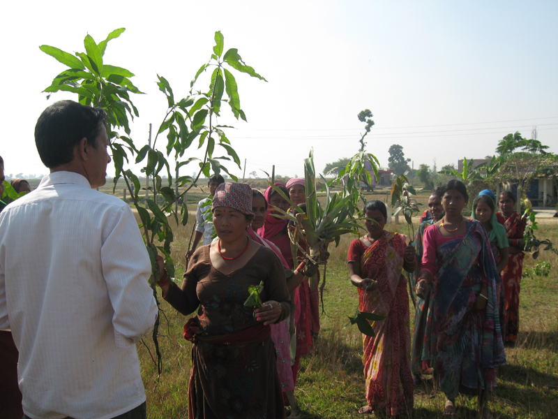 Heldigvis viste mr. Dunghana vores medbragte konsulent sig at være den fødte mediator og før vi så os om, var det lille samfund blevet enige om, at det da var en god ide, at bruge et stykke af området til have til ungernes mad! Som bevis på deres engagement og deltagelse kom mange med unge træer til at plante langs hegnet.