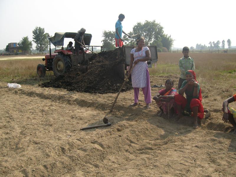 Da haven var pløjet og delt i felter til rotation efter økologiske forskrifter kom der kompost. Normalt skal skolen selv fremstille sin kompost, men denne gang købte vi færdigt formuldet komøg. Kompost er essentielt i økologisk jordbrug, fordi det er den måde man tilsætter næring til jorden på. Kvinderne fra Soiya står klar for at smide det over i haven. De er efterhånden erfarne ud i kompost!