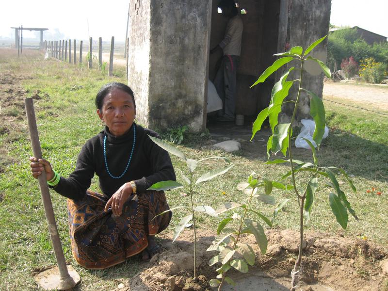 Tanken med træerne er dels, at de skal give skygge og skærme området, dels at de skal være en indtægtskilde. Fx. kan Neemtræets blade spises eller forarbejdes til lægemidler.